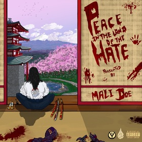 Peace In The Land Of The Hate Mali Doe front cover