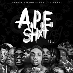 APE ShXt Vol.1 Tunnel Vision Global front cover