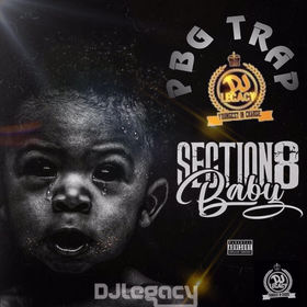 Section 8 Baby PBG Trap front cover