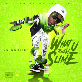 What You Tellem Slime Young Fairo front cover