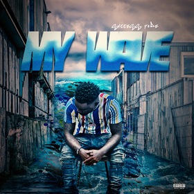 My Wave (Success Fode) Factory front cover