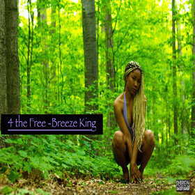 4 the Free Breeze King front cover