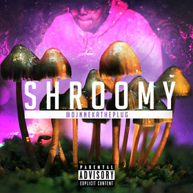Shroomy Dj Nneka The Plug front cover