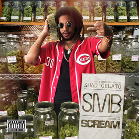 SMB Shad Gelato front cover
