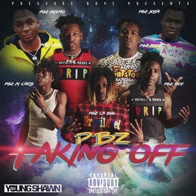 Taking Off PBZ front cover