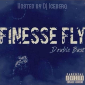 Finesse Fly: Double Bust M. Beez front cover