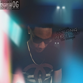 Wrong Perception CuzDevin front cover