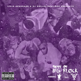 BEST OF: BIG FLOCK | #FREEFLOCK #YUNGGLIEEK | #DJULL front cover