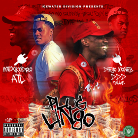PLUG LINGO Diego Money front cover