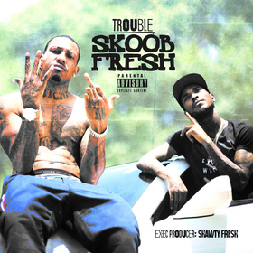 Skoob Fresh Trouble front cover