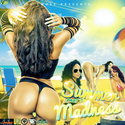 Summer Madness 3 Various Artists front cover