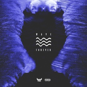 Wave Forever Ripp Flamez front cover