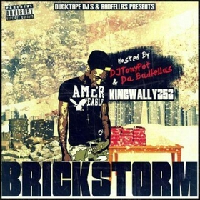 Brick Storm King Wally front cover