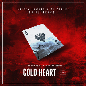 Cold Heart Drizzy Lowkey (Flex Gang) front cover