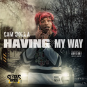 Having My Way by Cam Dolla
