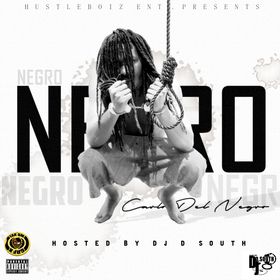 Negrology Del Negro, Carlo front cover