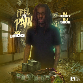 Feel My Pain Zay Bricks front cover