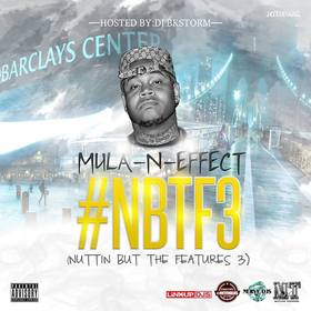 Nuttin But The Features 3 Mula-N-Effect front cover