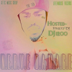 N.E.R.V.E. DAMAGE DJ Boss Chic front cover