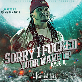 Sorry I Fucked Your Wave up Albee Al  front cover