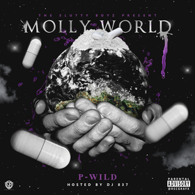 Molly World P-Wild front cover
