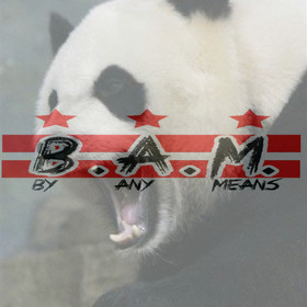 Panda Freestyle Fat Eric front cover