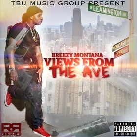 Views From The Ave Breezy Montana  TBU BREEZY front cover