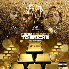 From Crumbs To Bricks Trap-A-Holics front cover