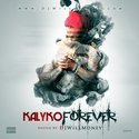Kalyko Forever DJ Will Money front cover