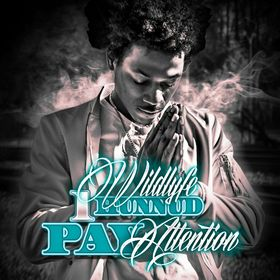 Pay Attention Wildlyfe 1Hunnnud front cover