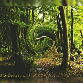 Forest Sounds Its B-Dub front cover