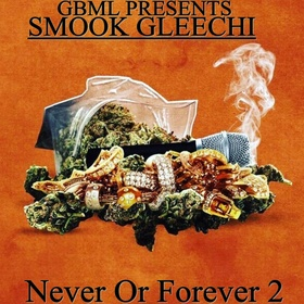 Never Or Forever 2 Smook Gleechi front cover