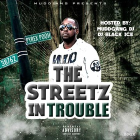 THE STREETZ IN TROUBLE - PYREX POOH Colossal Music Group front cover