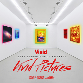 Vivid Pictures Vivid front cover