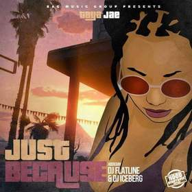Just Because  (Hood Substance Edition) Taya Jae front cover
