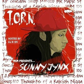 T.O.R.N. Sunny Jynx front cover