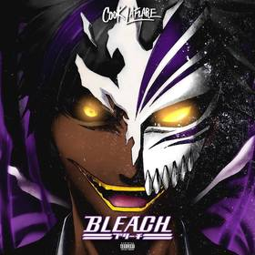 Bleach Cook LaFlare front cover