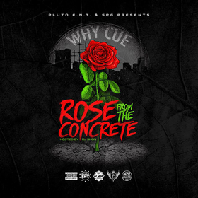 Rose From The Concrete Why Cue front cover
