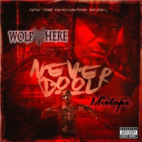 Never Bool Wolf Here front cover