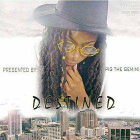 Destined Pig The Gemini  front cover