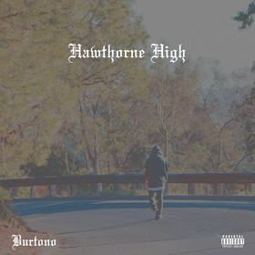 Hawthorne High Burtono front cover