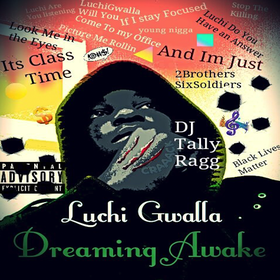 Dreaming Awake Luchi Gwalla front cover