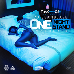 One Night Stand Vol. 5 DJ Seanblaze front cover