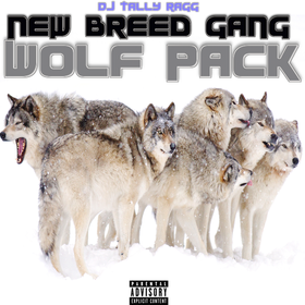 Wolf Pack New Breed Gang front cover