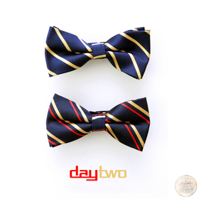 Day Two Young Dro front cover