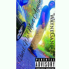 WAYNE GANG - UNTIL WE MEET AGAIN Colossal Music Group front cover