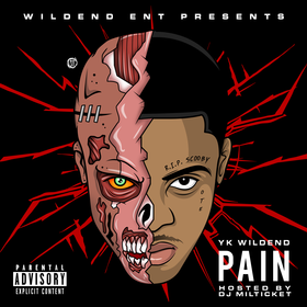 Pain YK WILD END YK front cover
