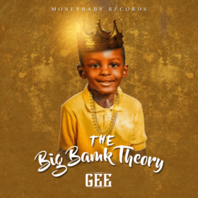 The Big Bank Theory Gee front cover