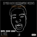 Your Name Here (EP) by Q. Ross