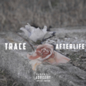 Afterlife by Trace